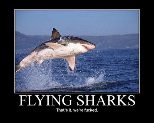 flying-sharks